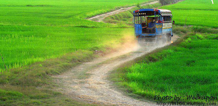 รถโดยสาร, ทุ่งนา, ทุ่งนาเขียวชอุ่ม, ถนน, ทุ่งนาสีเขียว, อีสานบ้านเฮา, อีสาน, ทางไปนา