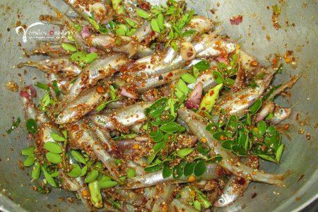 ก้อยปลาซิว, ก้อย, ปลา, ปลาซิว, ปลาซิวอ้าว, ปลาตัวเล็ก
