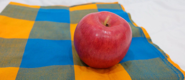 แอปเปิ้ล, ผ้าขาวม้า, แอปเปิ้ลบนผ้าขาวม้า, ผ้ามะม้า, apple, ผลไม้, ผ้าด้าม, สีฟ้า, ผ้าขาวม้าตารางหมากรุก, ผ้าขาวม้าเหลือฟ้า,